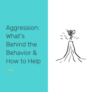 Aggression - reclaiming our students