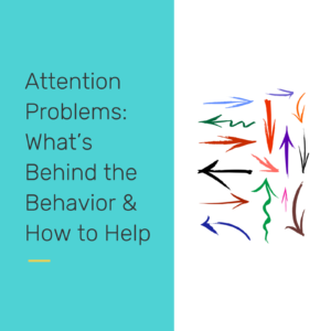 Attention Problems - reclaiming our students