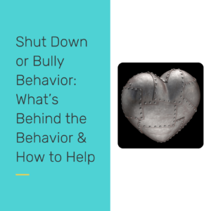 Shut Down or Bully behavior - reclaiming our students